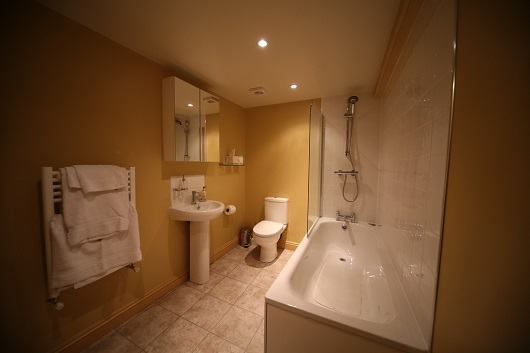 The en-suite bathroom of the family room